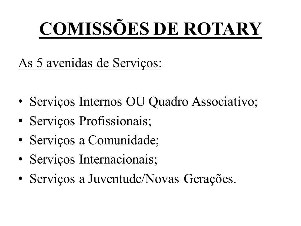 CARGO DE DIRETOR DA COMISSÃO DE SERVIÇOS INTERNACIONAIS