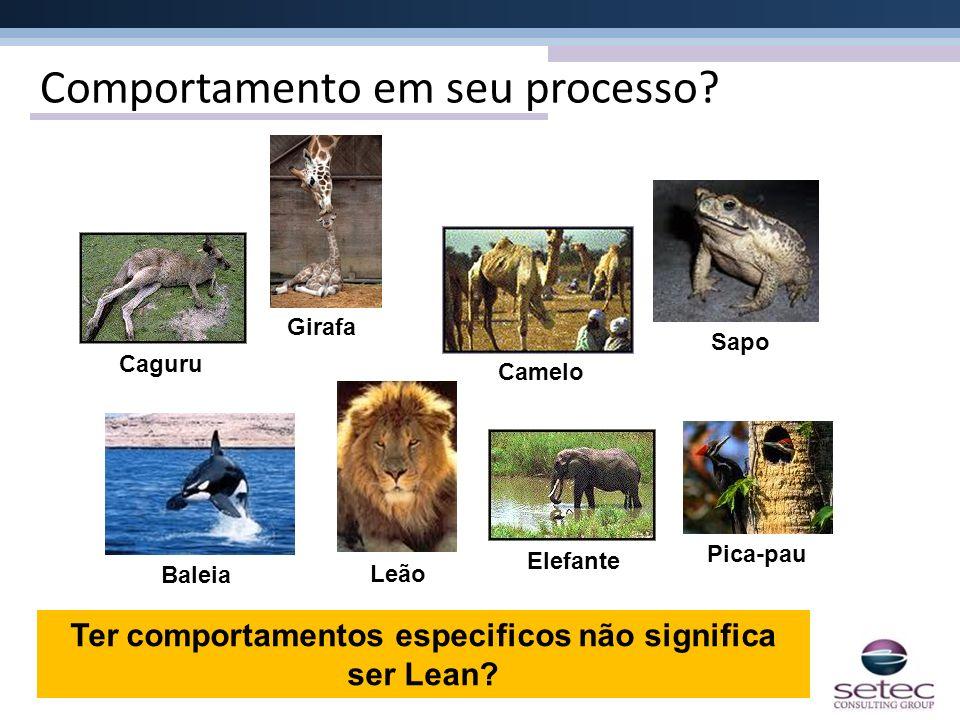 Comportamento em seu processo? Caguru Baleia Leão ElefantePica-pau Sapo Camelo Girafa Ter comportamentos especificos não significa ser Lean?