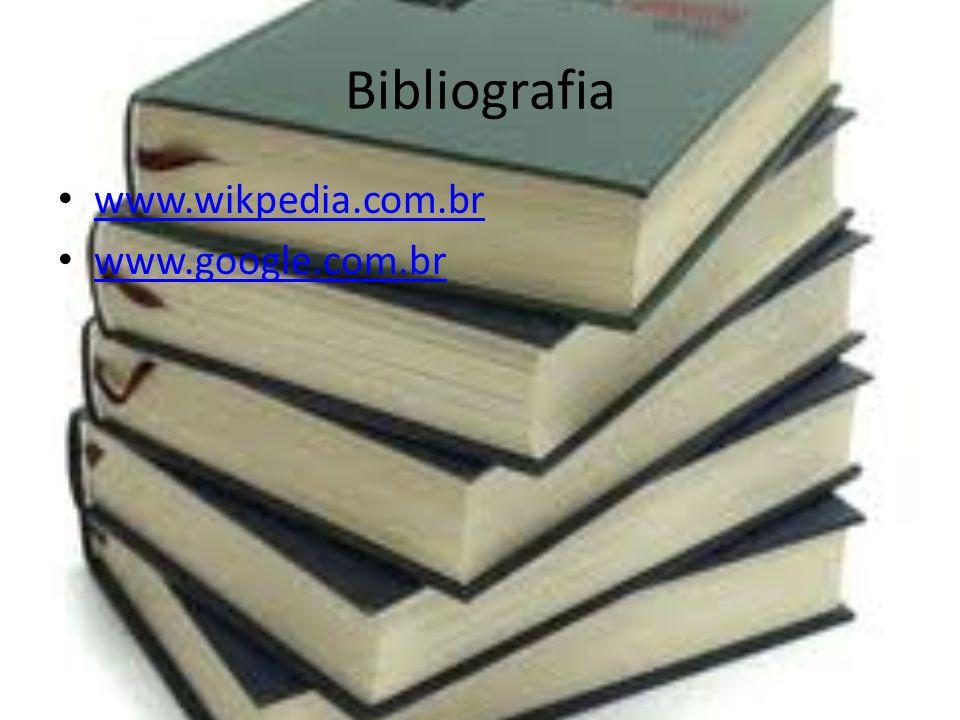 Bibliografia www.wikpedia.com.br www.google.com.br