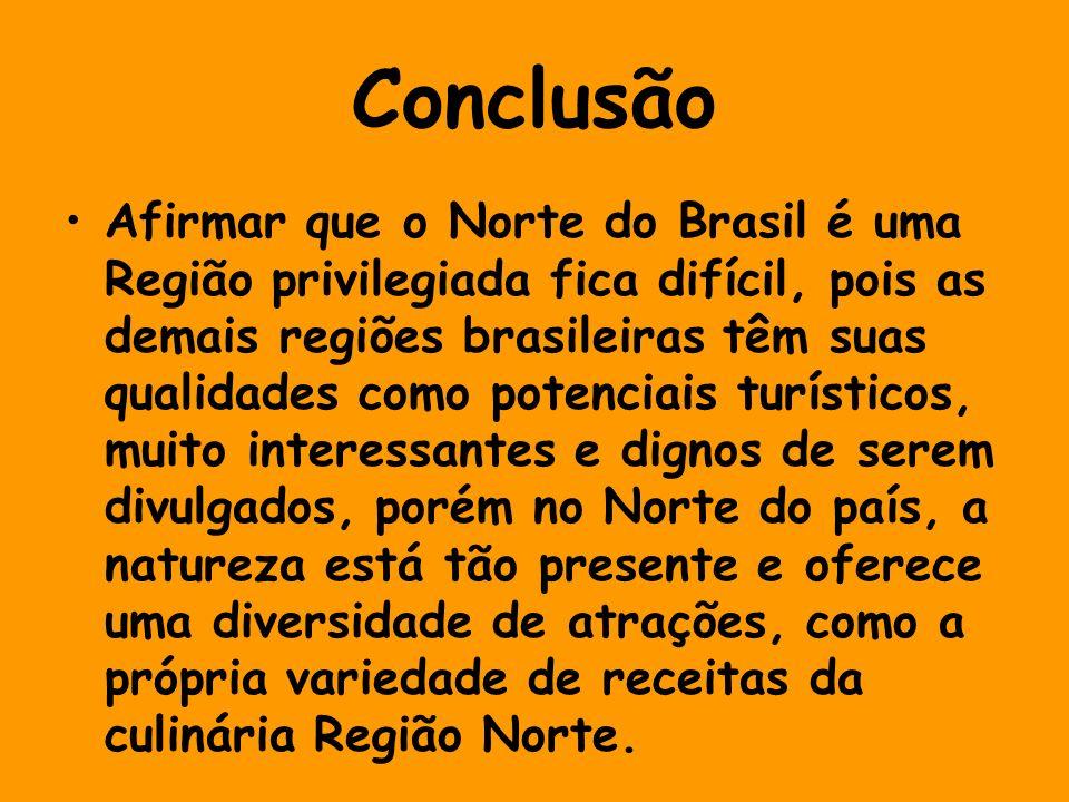 Conclusão Afirmar que o Norte do Brasil é uma Região privilegiada fica difícil, pois as demais regiões brasileiras têm suas qualidades como potenciais