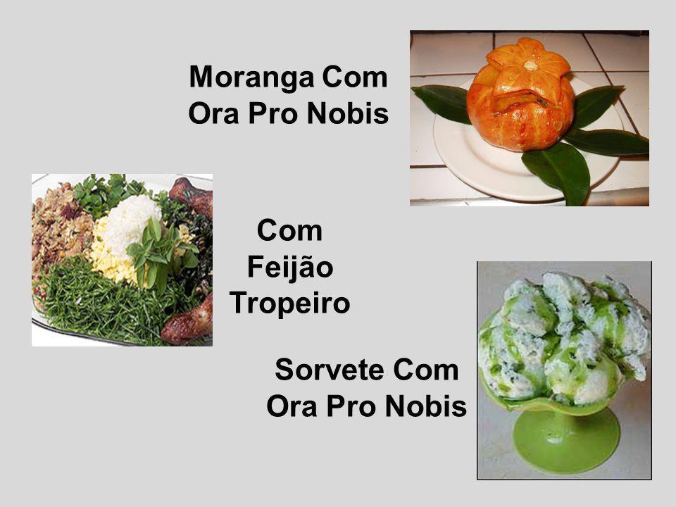 Salmão Com Ora Pro Nobis Torta De Carne