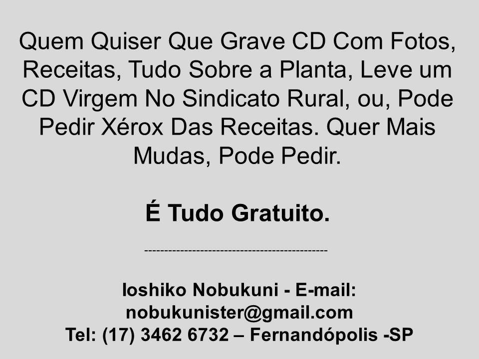 Quem Quiser Que Grave CD Com Fotos, Receitas, Tudo Sobre a Planta, Leve um CD Virgem No Sindicato Rural, ou, Pode Pedir Xérox Das Receitas. Quer Mais