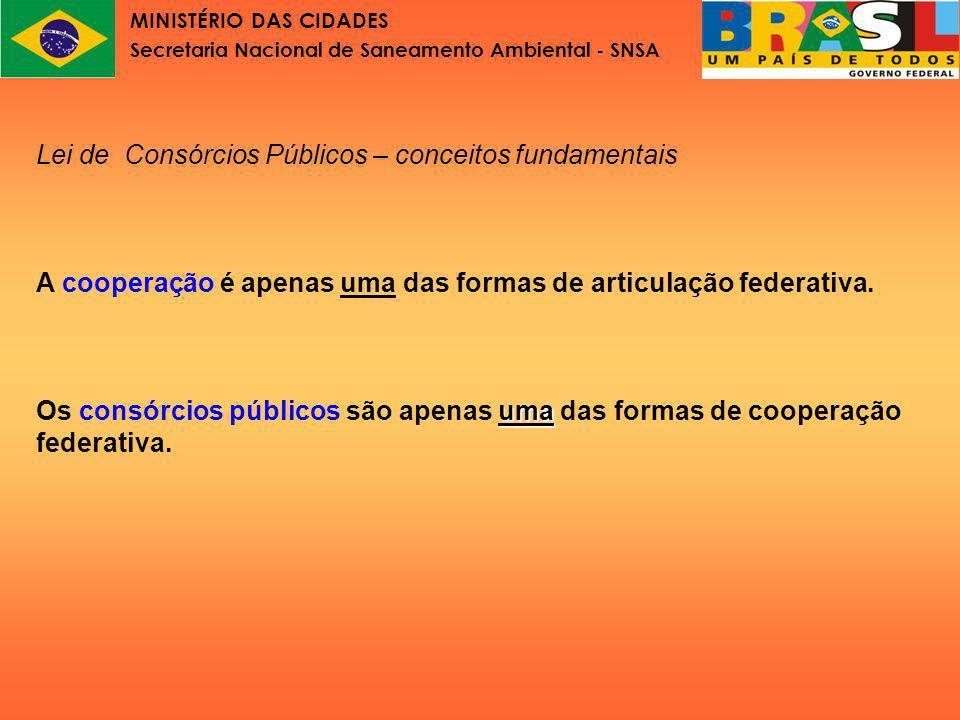 MINISTÉRIO DAS CIDADES Secretaria Nacional de Saneamento Ambiental - SNSA Lei nº11.107 Parte II Aspectos constitucionais