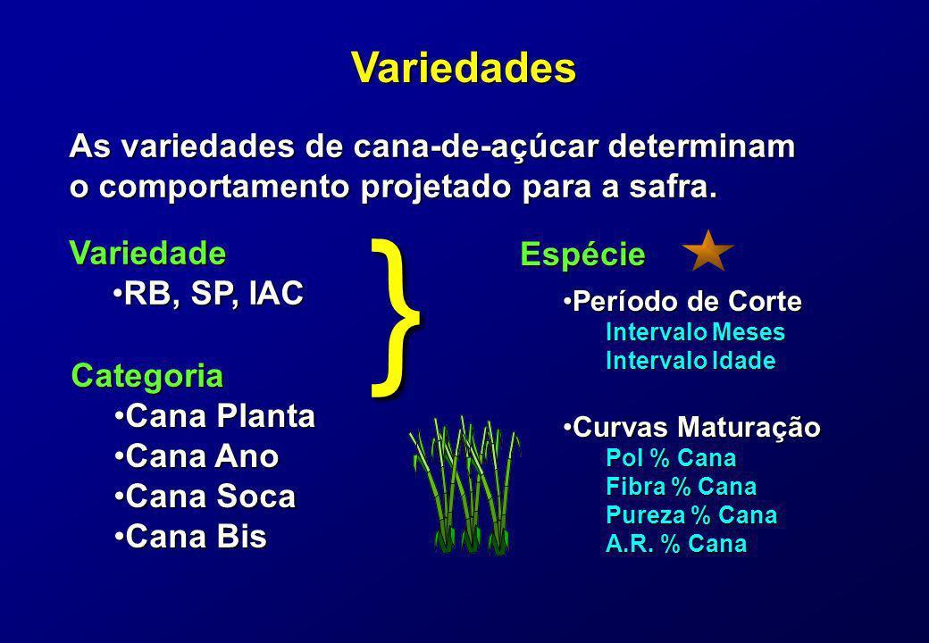 Variedades As variedades de cana-de-açúcar determinam o comportamento projetado para a safra. Variedade RB, SP, IACRB, SP, IAC Categoria Cana PlantaCa