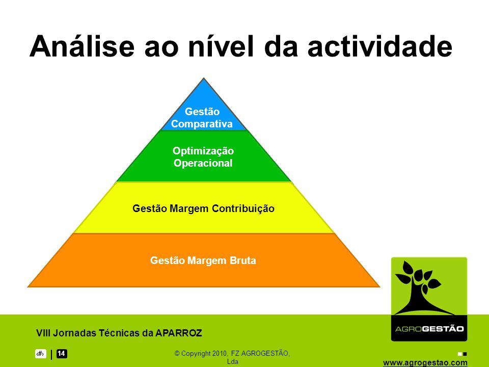 www.agrogestao.com VIII Jornadas Técnicas da APARROZ 1214© Copyright 2010, FZ AGROGESTÃO, Lda Análise ao nível da actividade Gestão Comparativa Optimi