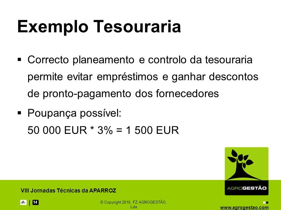www.agrogestao.com VIII Jornadas Técnicas da APARROZ 414© Copyright 2010, FZ AGROGESTÃO, Lda Exemplo Tesouraria Correcto planeamento e controlo da tes