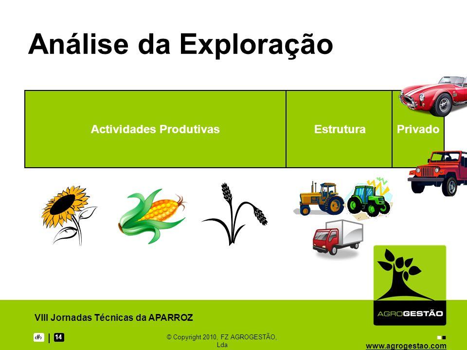 www.agrogestao.com VIII Jornadas Técnicas da APARROZ 714© Copyright 2010, FZ AGROGESTÃO, Lda Análise da Exploração Actividades ProdutivasEstruturaPriv