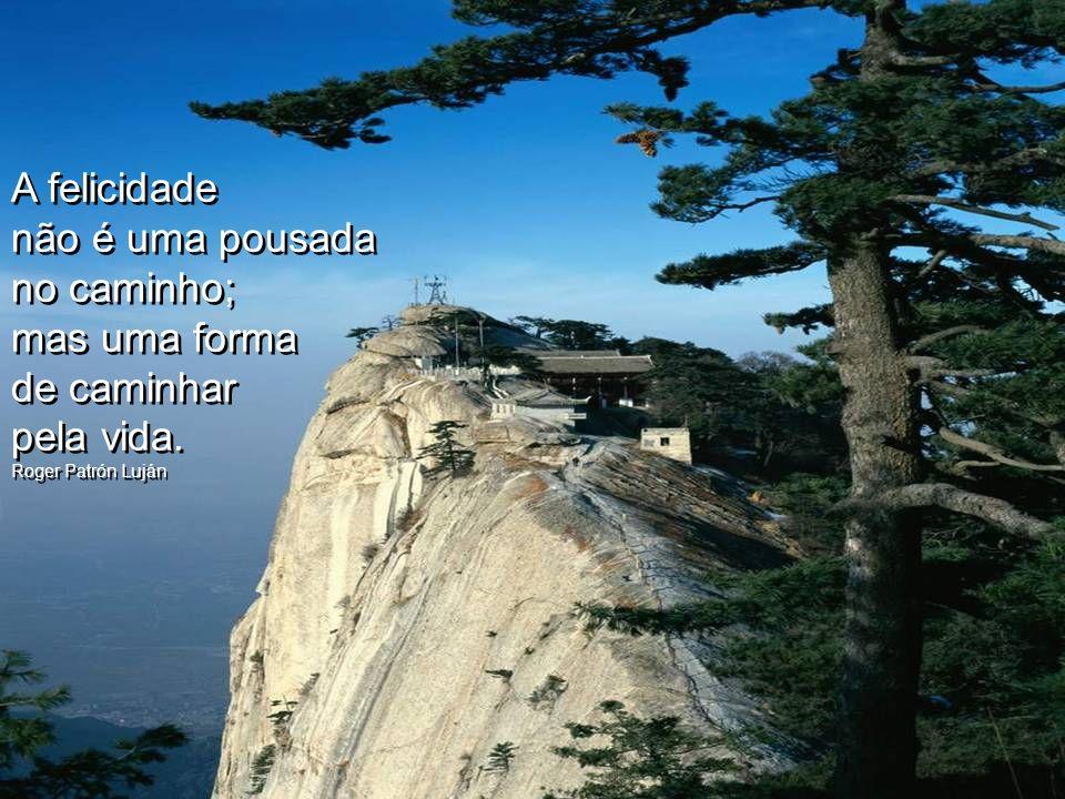 Construa seu caminho, com pedras fundamentais para sua felicidade.