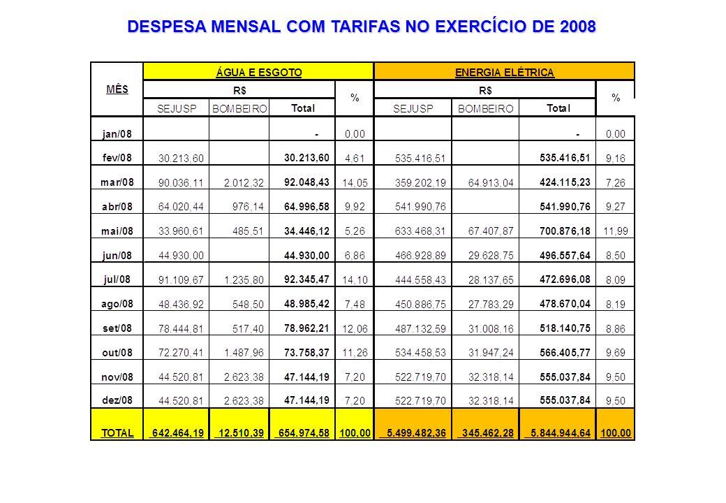 DESPESA MENSAL COM TARIFAS NO EXERCÍCIO DE 2008