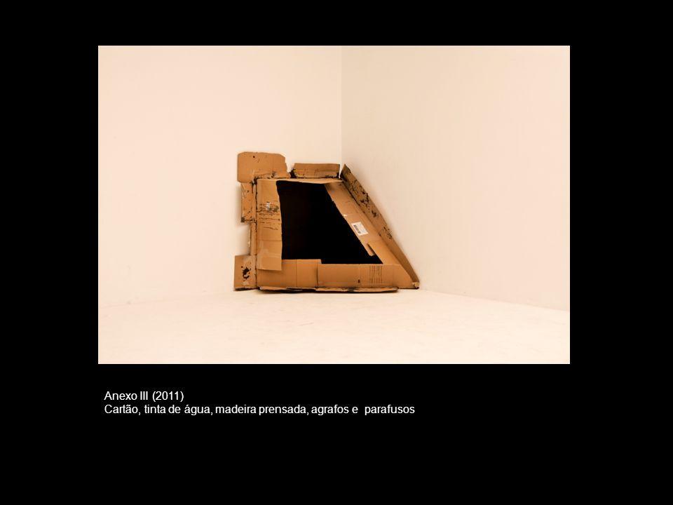 Anexo III (2011) Cartão, tinta de água, madeira prensada, agrafos e parafusos