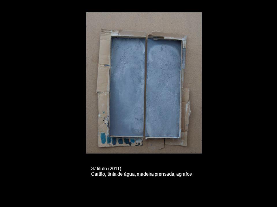 S/ título (2011) Cartão, tinta de água, madeira prensada, agrafos