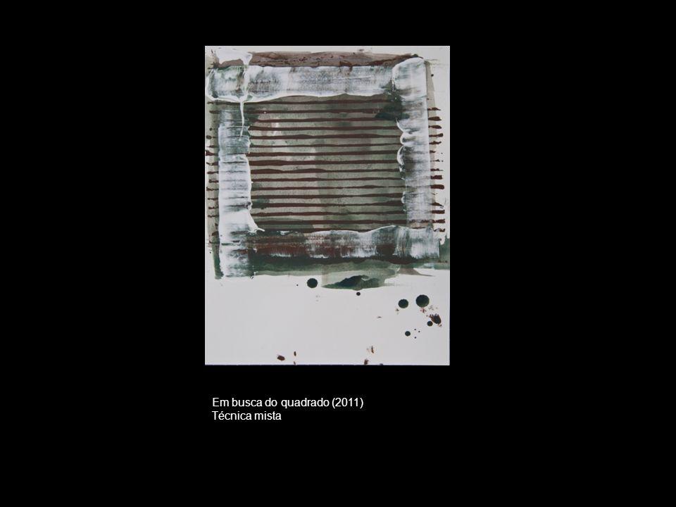 Em busca do quadrado (2011) Técnica mista