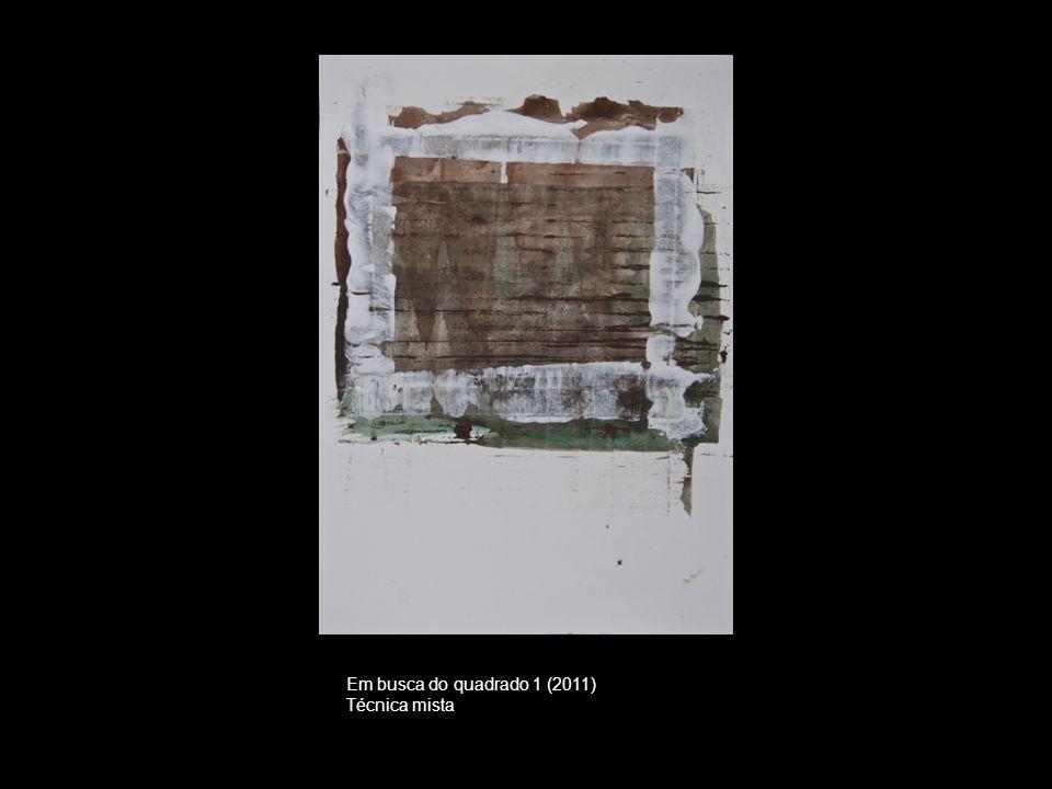 Em busca do quadrado 1 (2011) Técnica mista
