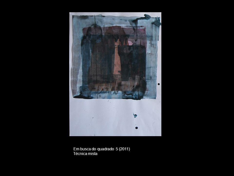 Em busca do quadrado 5 (2011) Técnica mista