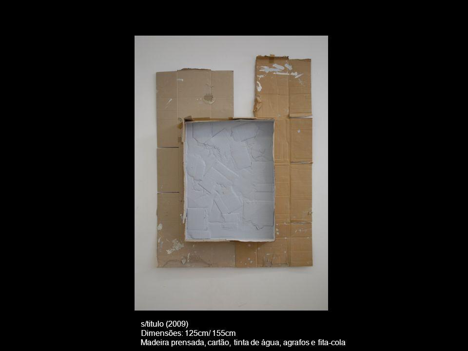 s/título (2010) Dimensões: 125cm/ 150 cm Cartão, tinta de água, madeira prensada, agrafos e fita-cola