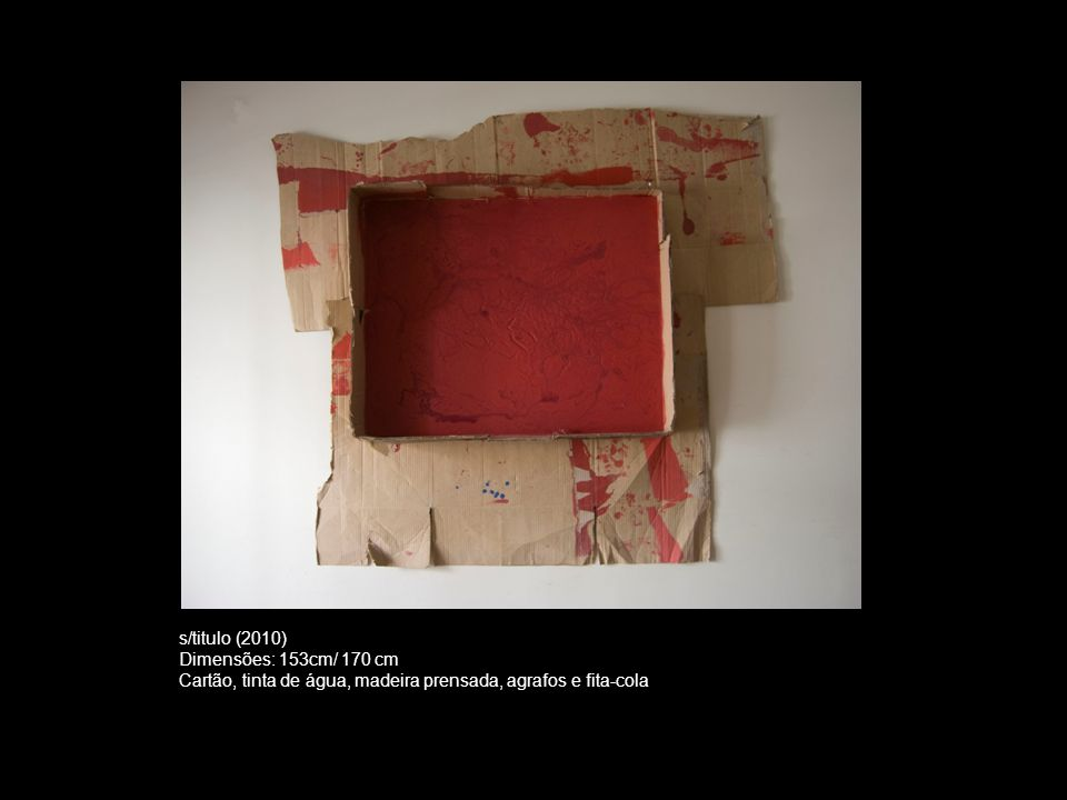 s/titulo (2010) Dimensões: 153cm/ 170 cm Cartão, tinta de água, madeira prensada, agrafos e fita-cola
