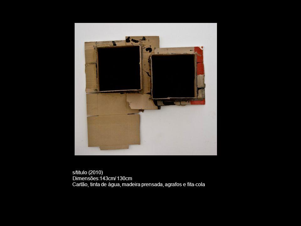 s/titulo (2010) Dimensões:143cm/ 130cm Cartão, tinta de água, madeira prensada, agrafos e fita-cola