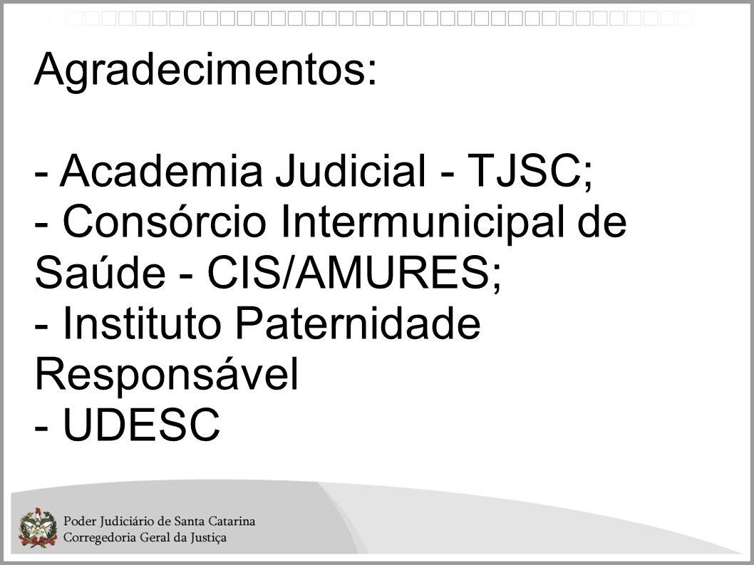 Agradecimentos: - Academia Judicial - TJSC; - Consórcio Intermunicipal de Saúde - CIS/AMURES; - Instituto Paternidade Responsável - UDESC