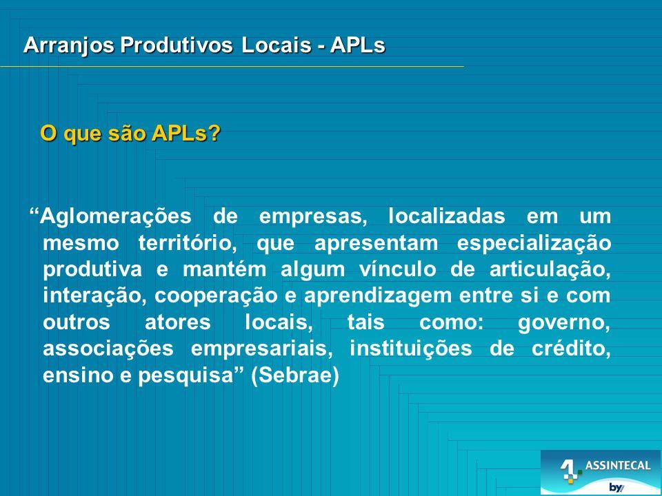 Arranjos Produtivos Locais - APLs Aglomerações de empresas, localizadas em um mesmo território, que apresentam especialização produtiva e mantém algum vínculo de articulação, interação, cooperação e aprendizagem entre si e com outros atores locais, tais como: governo, associações empresariais, instituições de crédito, ensino e pesquisa (Sebrae) O que são APLs?