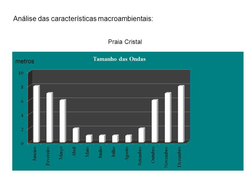 Análise das características macroambientais: Praia Cristal metros