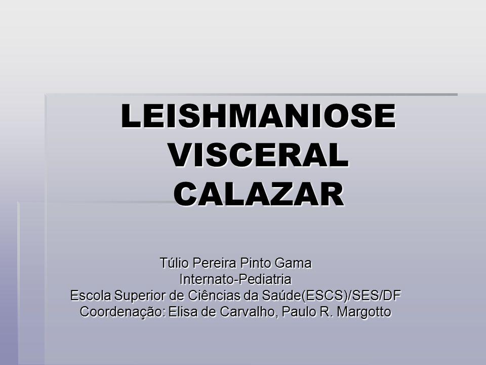 LEISHMANIOSE VISCERAL CALAZAR Túlio Pereira Pinto Gama Internato-Pediatria Escola Superior de Ciências da Saúde(ESCS)/SES/DF Coordenação: Elisa de Car