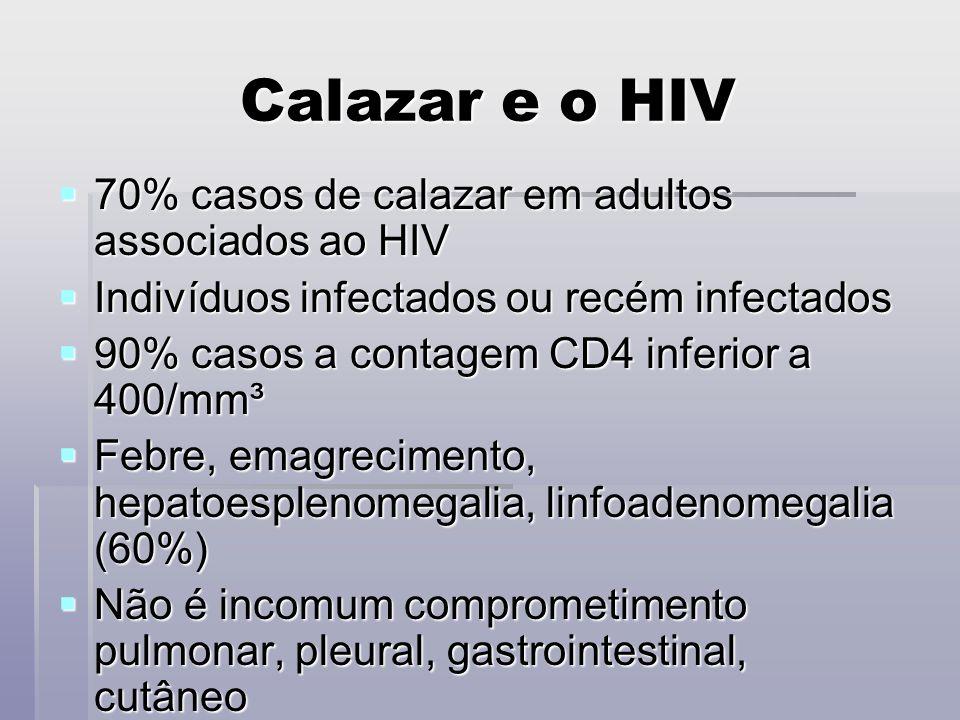 Calazar e o HIV 70% casos de calazar em adultos associados ao HIV 70% casos de calazar em adultos associados ao HIV Indivíduos infectados ou recém inf