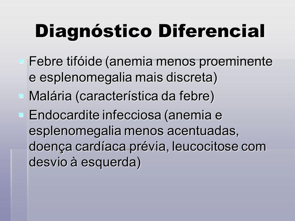 Diagnóstico Diferencial Febre tifóide (anemia menos proeminente e esplenomegalia mais discreta) Febre tifóide (anemia menos proeminente e esplenomegal