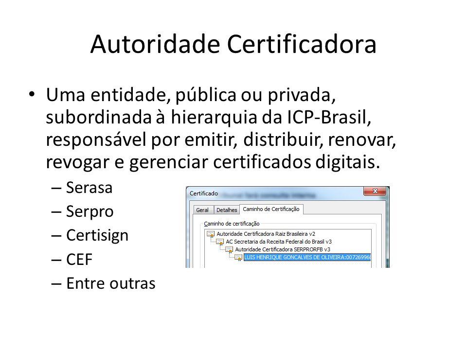 Autoridade Certificadora Uma entidade, pública ou privada, subordinada à hierarquia da ICP-Brasil, responsável por emitir, distribuir, renovar, revoga