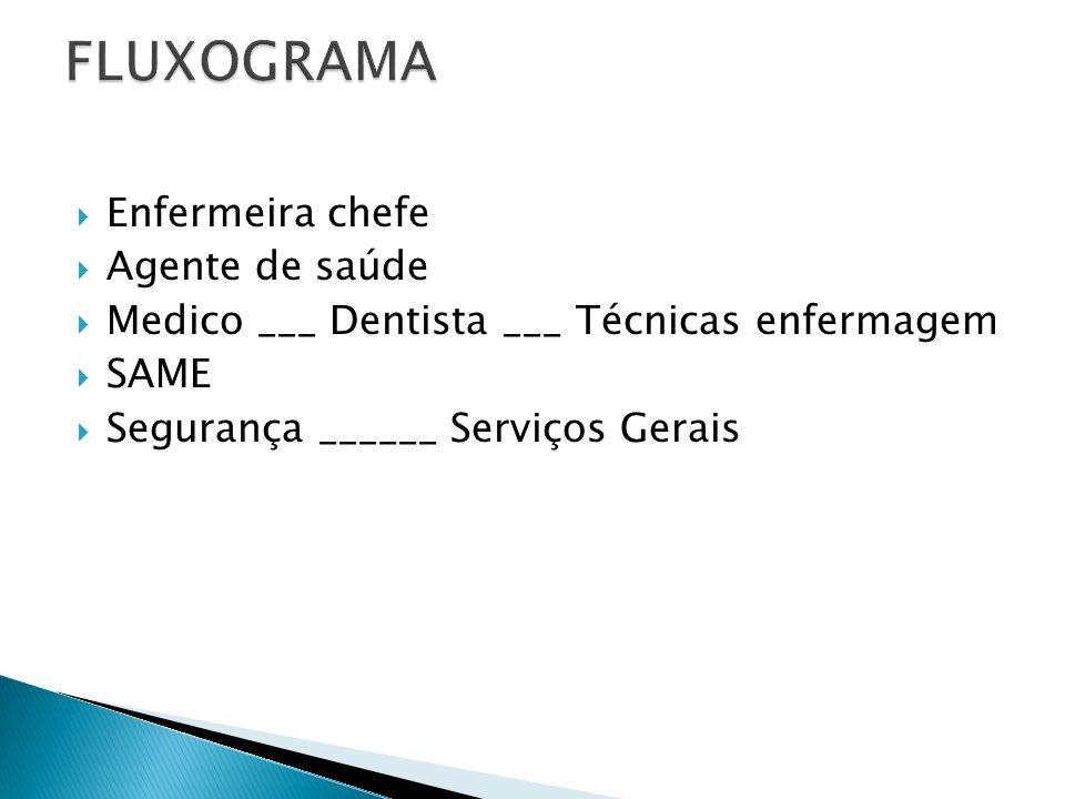 Enfermeira chefe Agente de saúde Medico ___ Dentista ___ Técnicas enfermagem SAME Segurança ______ Serviços Gerais