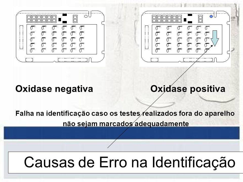 Causas de Erro na Identificação Oxidase negativaOxidase positiva Falha na identificação caso os testes realizados fora do aparelho não sejam marcados