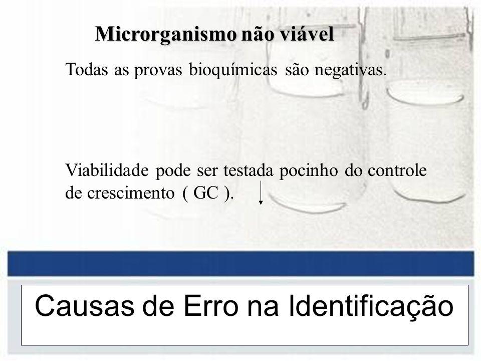 Causas de Erro na Identificação Microrganismo não viável Microrganismo não viável Todas as provas bioquímicas são negativas. Viabilidade pode ser test
