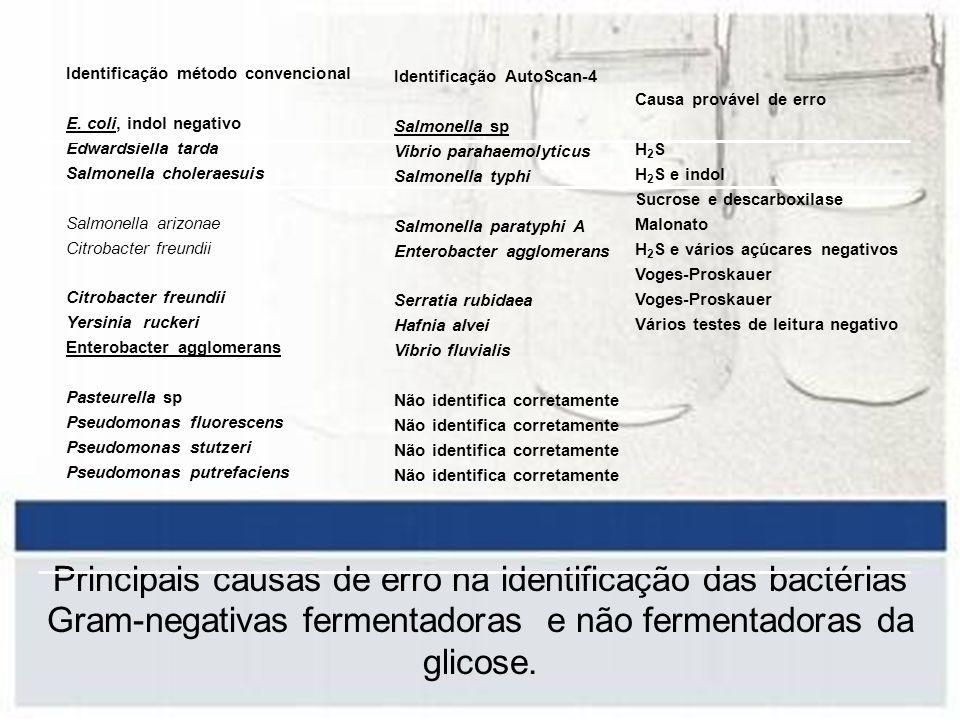 Identificação método convencional E. coli, indol negativo Edwardsiella tarda Salmonella choleraesuis Salmonella arizonae Citrobacter freundii Yersinia