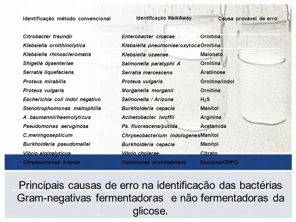 Identificação método convencional Citrobacter freundii Klebsiella ornithinolytica Klebsiella rhinoscleromatis Shigella dysenteriae Serratia liquefacie