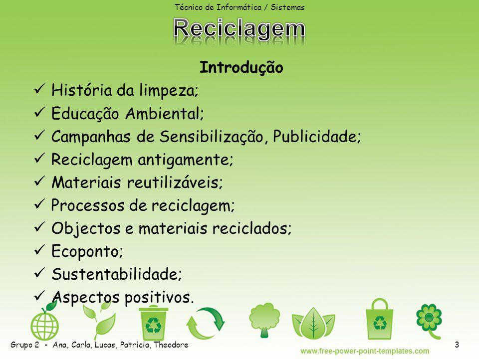 Introdução História da limpeza; Educação Ambiental; Campanhas de Sensibilização, Publicidade; Reciclagem antigamente; Materiais reutilizáveis; Processos de reciclagem; Objectos e materiais reciclados; Ecoponto; Sustentabilidade; Aspectos positivos.