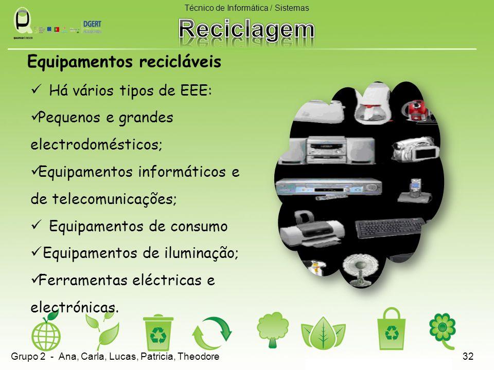 Há vários tipos de EEE: Pequenos e grandes electrodomésticos; Equipamentos informáticos e de telecomunicações; Equipamentos de consumo Equipamentos de