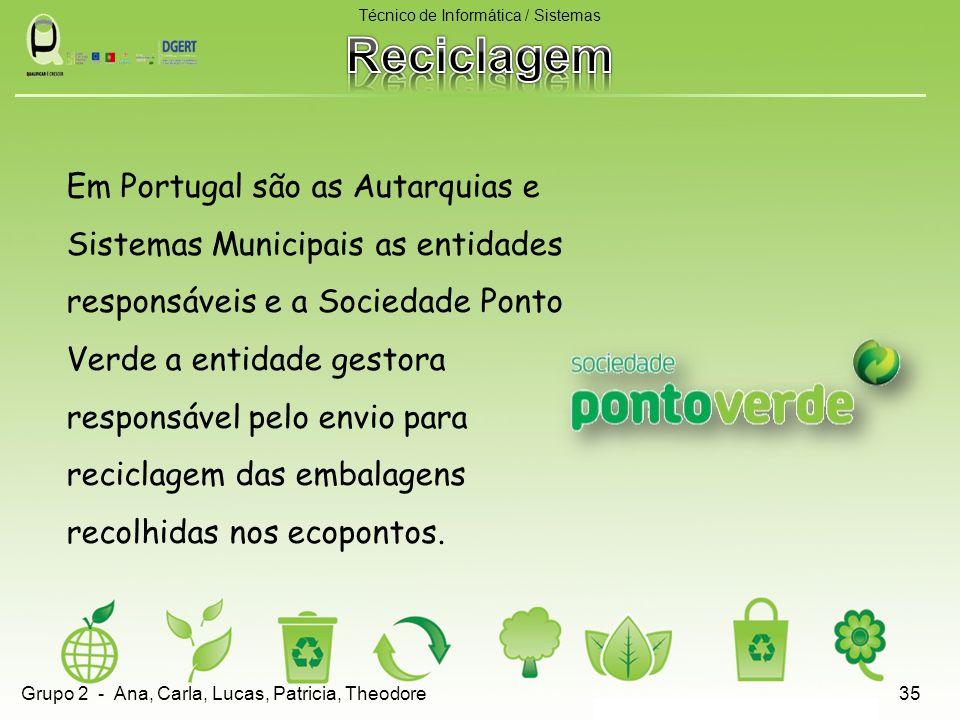 Em Portugal são as Autarquias e Sistemas Municipais as entidades responsáveis e a Sociedade Ponto Verde a entidade gestora responsável pelo envio para