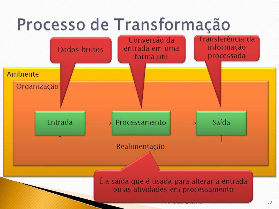 frufrek@utfpr.edu.br33 Entrada Processamento Saída Ambiente Organização Realimentação Dados brutos Conversão da entrada em uma forma útil Transferênci