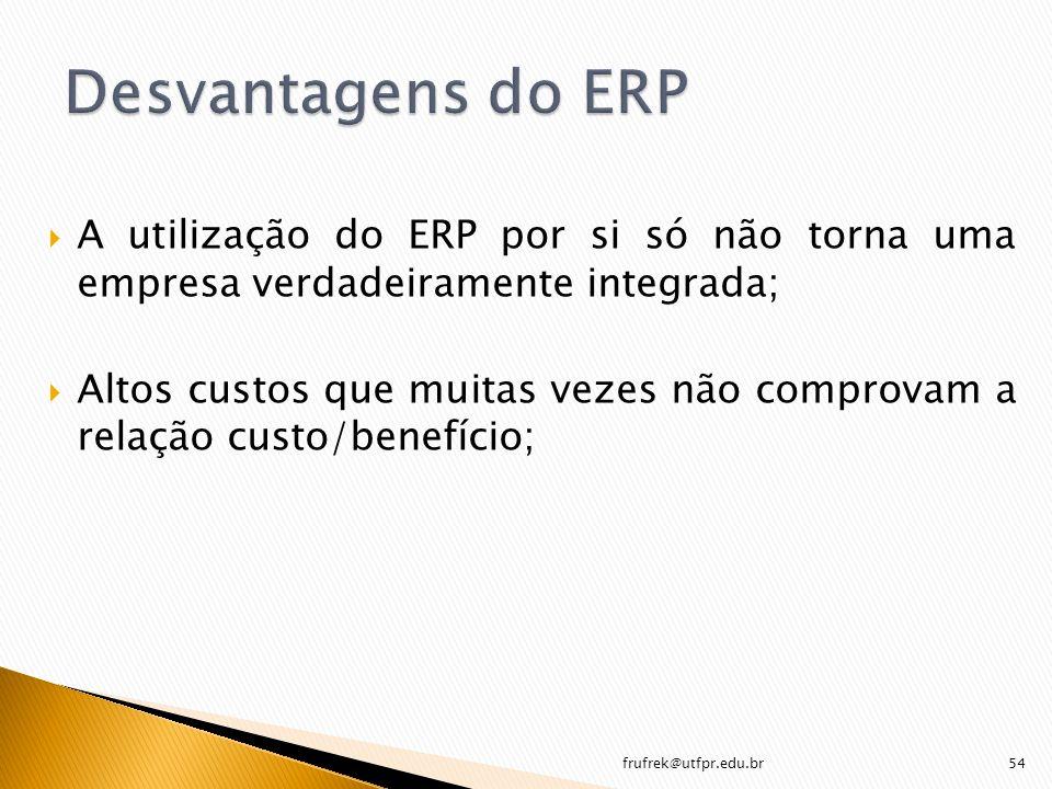 A utilização do ERP por si só não torna uma empresa verdadeiramente integrada; Altos custos que muitas vezes não comprovam a relação custo/benefício;