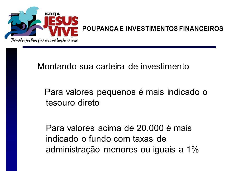 Montando sua carteira de investimento Para valores pequenos é mais indicado o tesouro direto Para valores acima de 20.000 é mais indicado o fundo com