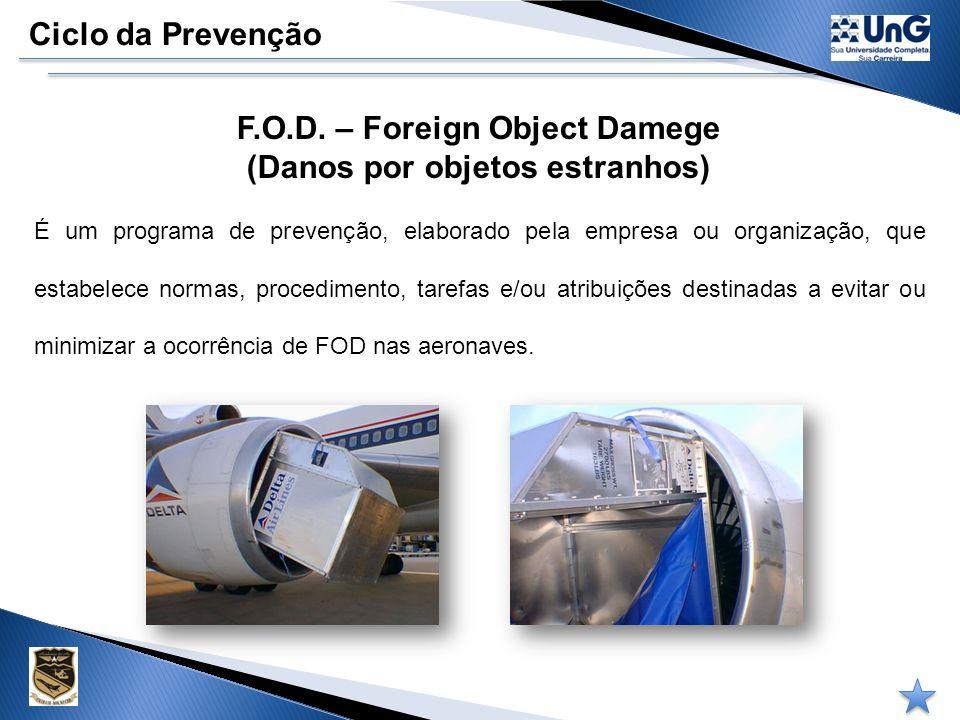 Ciclo da Prevenção PPAA – Programa de Prevenção de Acidentes Aeronáuticos É o documento que estabelece ações e responsabilidades, definidas e dirigida