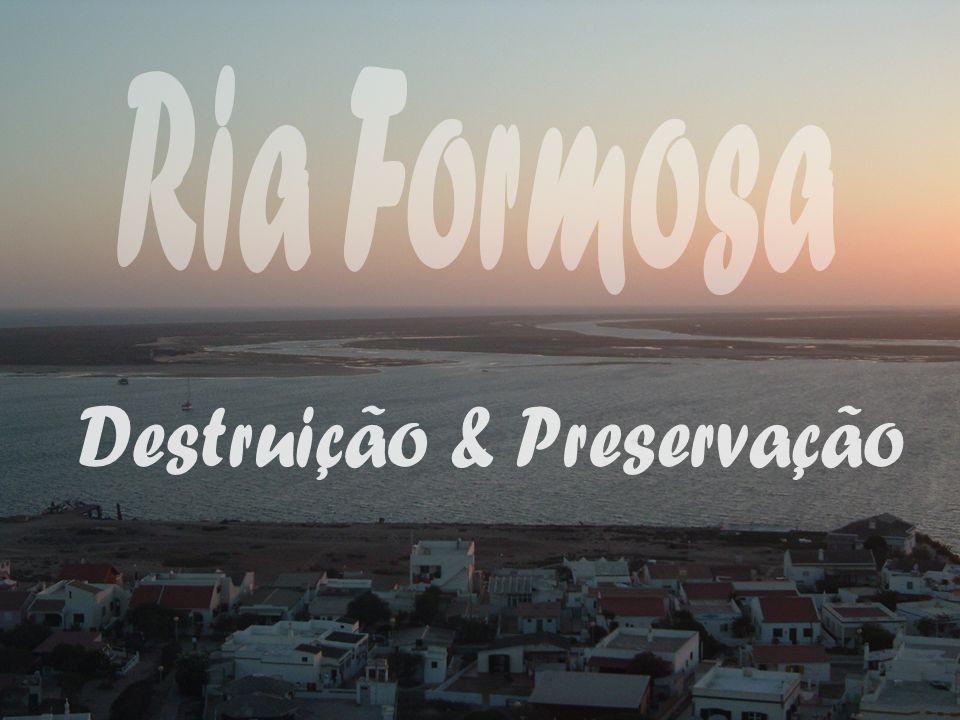 A Ria Formosa é uma área protegida, devido ao seu elevado índice de biodiversidade, conseguindo deste modo o estatuto de Parque Natural em 1987.
