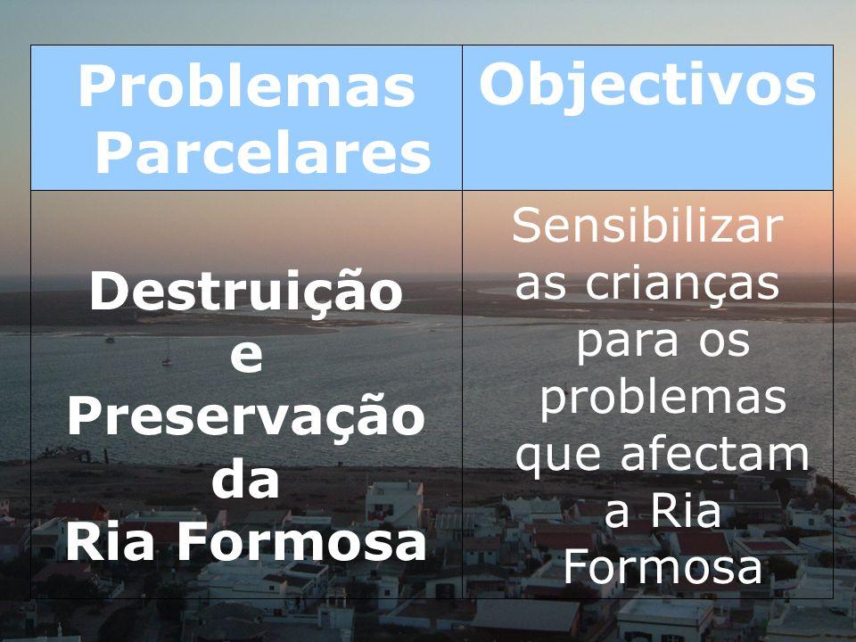 Sensibilizar as crianças para os problemas que afectam a Ria Formosa Destruição e Preservação da Ria Formosa ObjectivosProblemas Parcelares