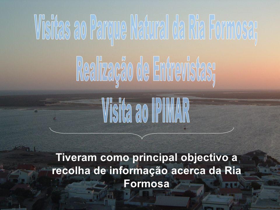 Tiveram como principal objectivo a recolha de informação acerca da Ria Formosa
