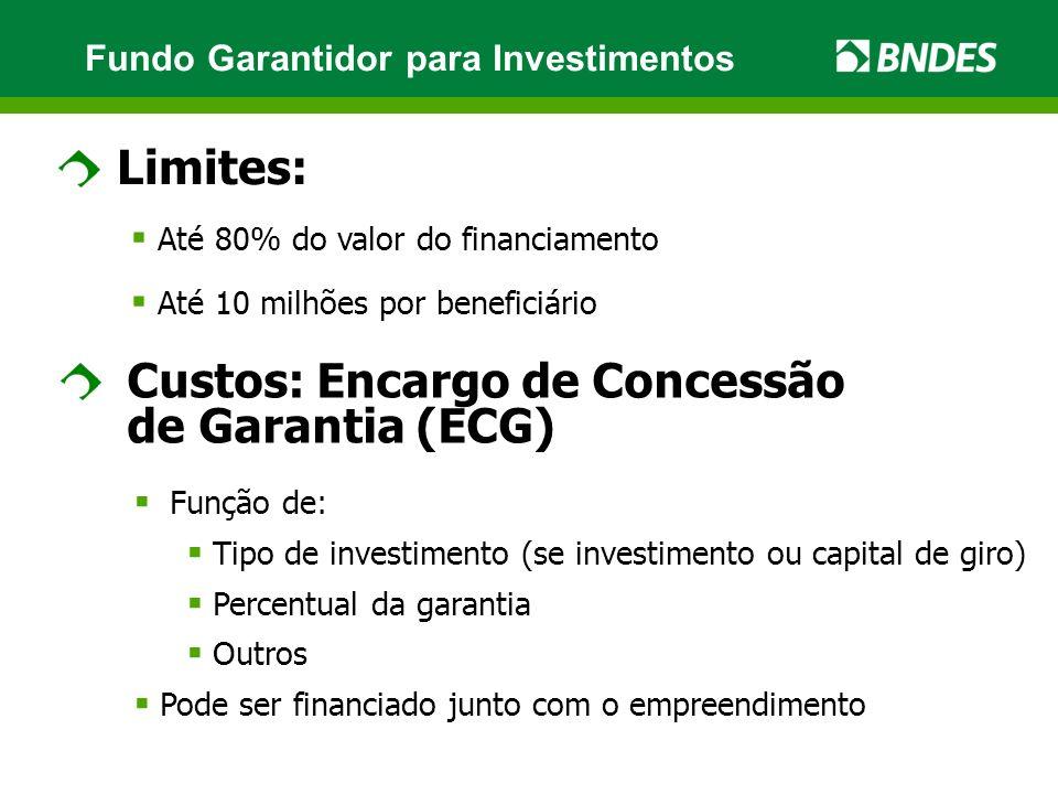 Limites: Até 80% do valor do financiamento Até 10 milhões por beneficiário Custos: Encargo de Concessão de Garantia (ECG) Função de: Tipo de investime