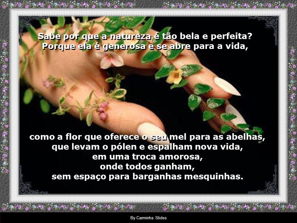 By Carminha Slides Paulo Roberto Gaefke