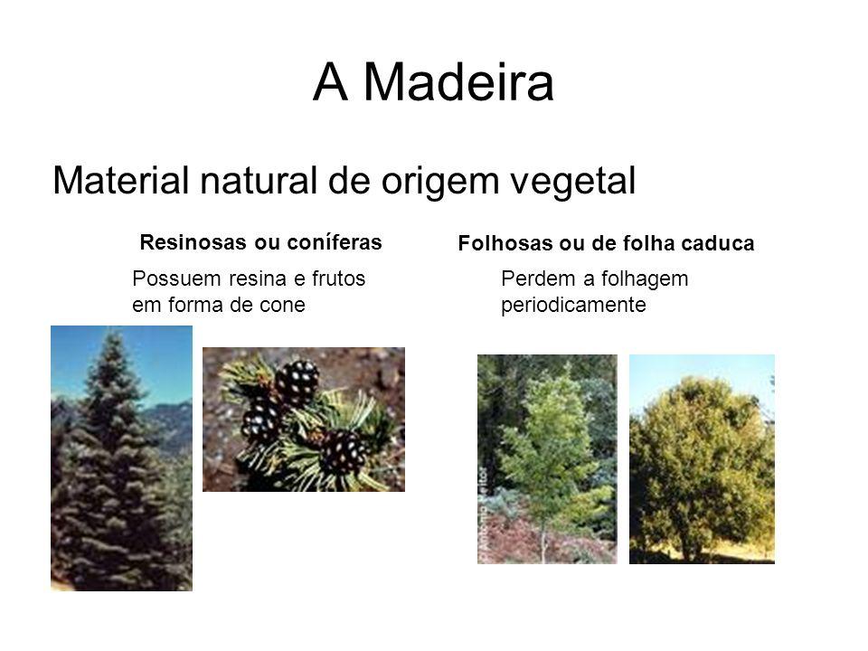 A Madeira Material natural de origem vegetal Resinosas ou coníferas Folhosas ou de folha caduca Possuem resina e frutos em forma de cone Perdem a folh