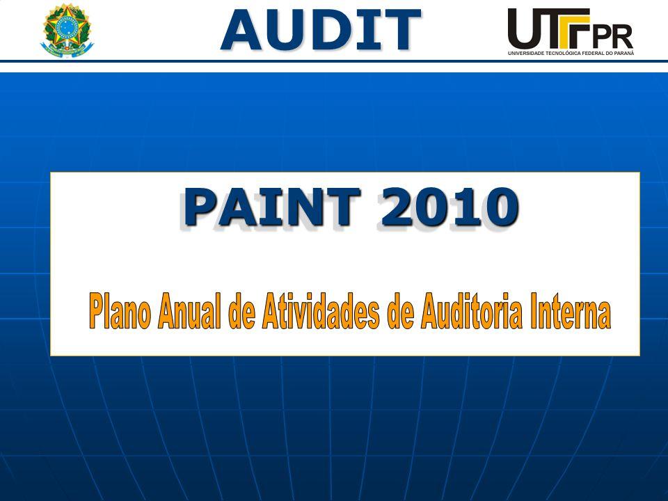 AUDIT PAINT 2010