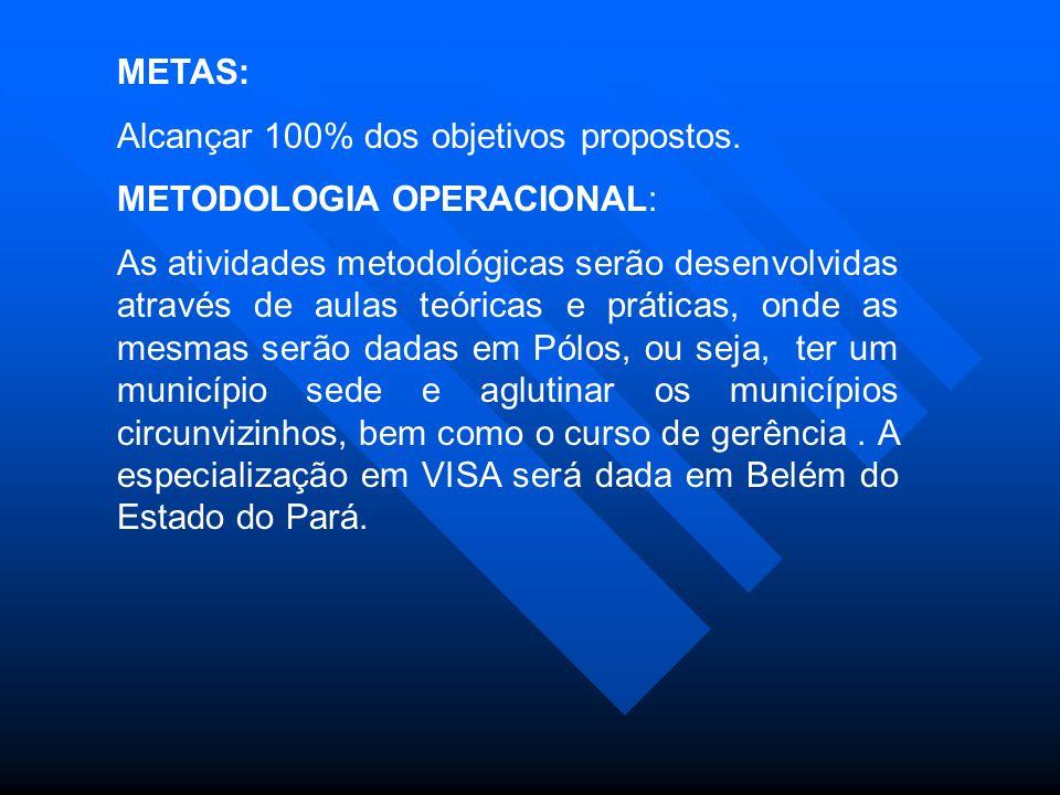METAS: Alcançar 100% dos objetivos propostos.