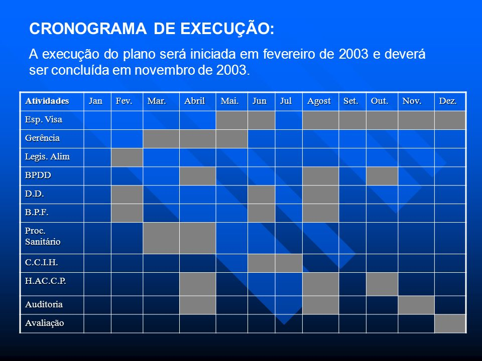 CRONOGRAMA DE EXECUÇÃO: A execução do plano será iniciada em fevereiro de 2003 e deverá ser concluída em novembro de 2003.