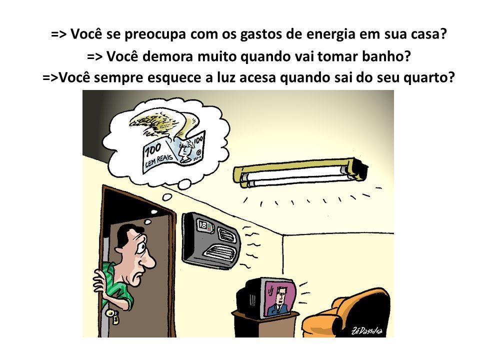 => Você se preocupa com os gastos de energia em sua casa? => Você demora muito quando vai tomar banho? =>Você sempre esquece a luz acesa quando sai do